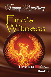 Fire's Witness cover
